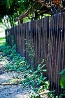 Updating your old fence can add value to your home.