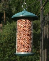 You can build your own bird feeder at home in a few steps.