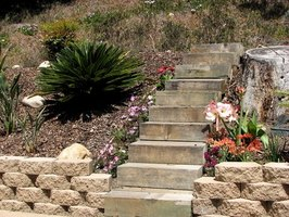 Make sure the weather will be dry before painting outdoor steps.