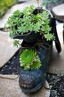 Old, recycled items can gain new life as decorations in a garden.