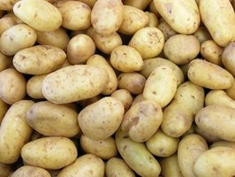 Fingerling potatoes are small, waxy potatoes that come in many varieties.