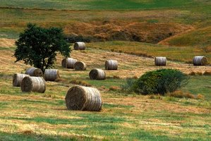 Square bale grapples help move large bales.