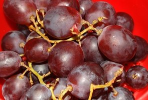 Grapes make an excellent still life subject.