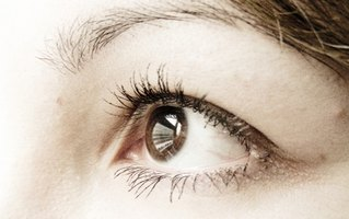 Eyelashes protect the eye from debris.