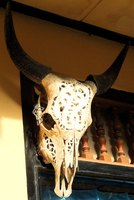 A painted skull, whether a spiritual piece or decorative, is a striking image in a home.