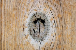 Wood filler can help repair holes in wood pieces like this one.