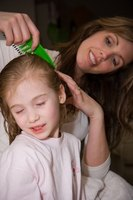 Combing through wet hair can remove lice eggs, also called nits.