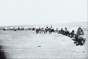 A wagon train moving along the Oregon Trail