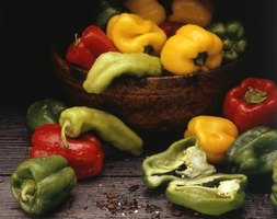 Capsicum fruits, called peppers, range from very mild to extremely hot.