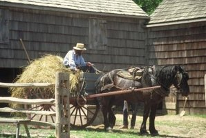 Many Amish people use farming tools pulled by horses.