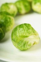 Brussels sprouts are related to cabbage.