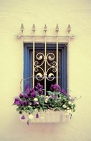 Use flowers in a planter box to dress up a window.