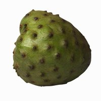 Cherimoya trees are hardy only in U.S. Department of Agriculture zone 10.