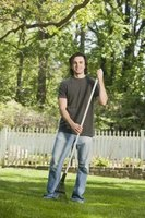 Use a handheld lawn edger for a perfectly manicured lawn.