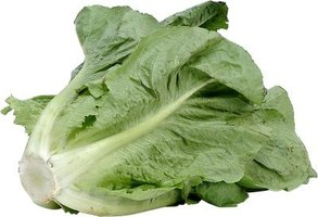Choose romaine lettuce heads with crisp leaves.