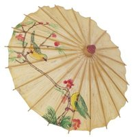 Oriental umbrellas are among the most decorative in the world.