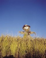 Making a mini scarecrow is easier than making a life-sized one.