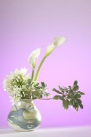 Ikebana, also called kado, the Japanese art of flower arranging, is practiced in silence.