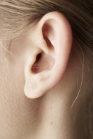 An ear is a difficult shape to render well in any medium