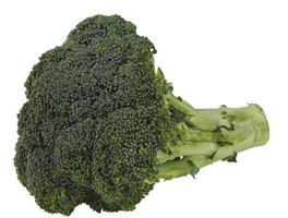 Broccoli is a cool-season plant.
