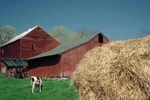 Knowing nutritional content of your hay will help determine how you feed your farm animals