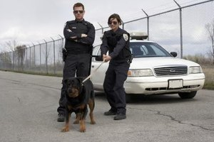 K9 cops average an annual salary of $58,974 per year.