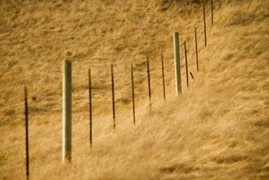 Many wire fences are made with a mix of wood posts and T-posts.