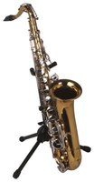 The alto saxophone has several keys to play chromatic notes.