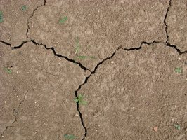 Cracks like these can be repaired fairly easily.