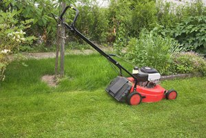 Walbro specializes in carburetors for small engines, including lawn mowers.