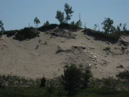 Michigan's dunes cover a quarter of a million acres.
