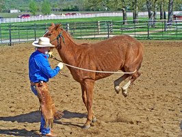 A round pen will help keep you from losing your horse while training.