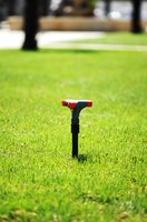 An annual lawn-maintenance schedule can eliminate the need for expensive lawn-care services.