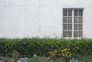 Stucco applied to a house's exterior creates a strong, weather-resistant coating.