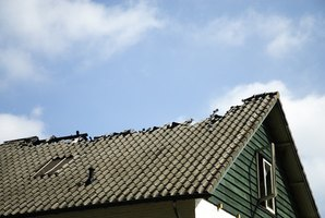 Falling trees can cause serious damage to a roof.