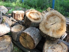 Logs are bucked up into stove length pieces called rounds.