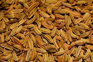 Fennel seeds can be purchased whole or ground and used as a spice.