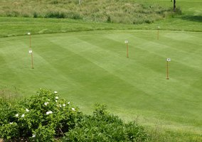 Putting greens consist of either bent grass or Bermuda grass.