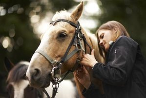 Worming is a simple thing that will allow your horse to live a long life.