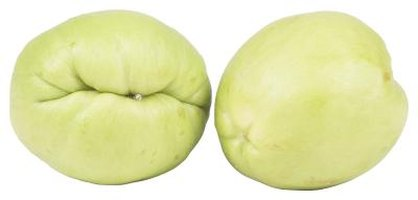 Chayote squash are about the size of a large avocado.