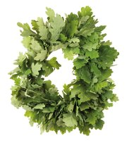 Glycerine preserved leaves can be formed into an everlasting wreath.