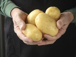Use firm, unblemished potatoes to ensure the best flavor and texture.