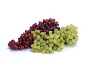 Grape plants produce mature fruits at different times throughout the growing season.