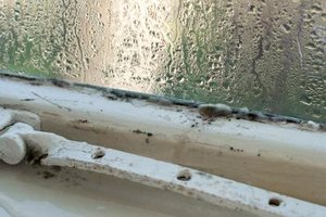 A wet windowsill can grow mold and damage the wall next to it.