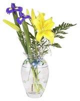 flower preservative packet ingredients ehow