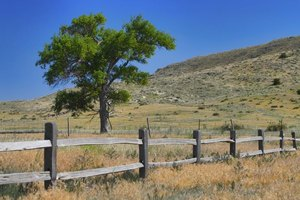 A split rail fence in the country.