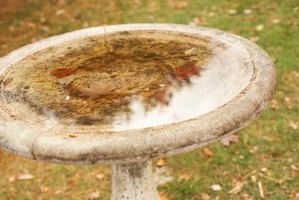 How to Seal a Birdbath