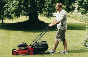 Rear discharge mowers are best for bagging grass.