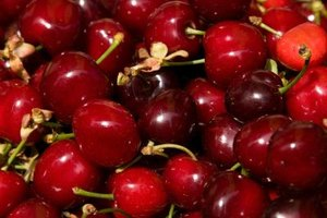 Michigan is known for its cherries.