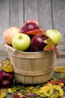 Liquid seaweed promotes healthy apples when used properly.